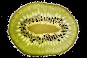 kiwi-2673038_1920